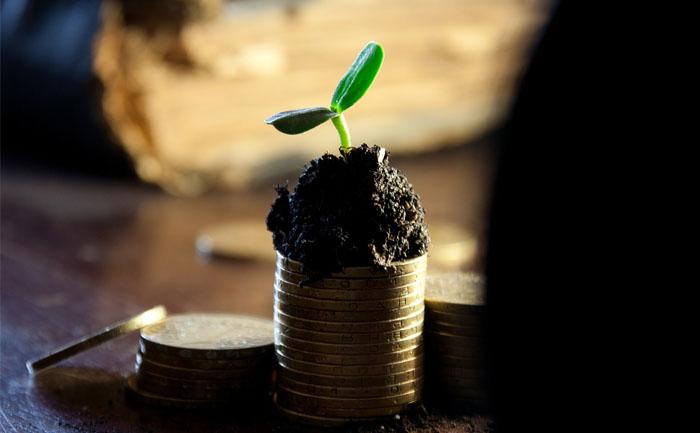 ブログ運営6ヶ月目の収益公開。一般人のブログ収入はこんな感じ。