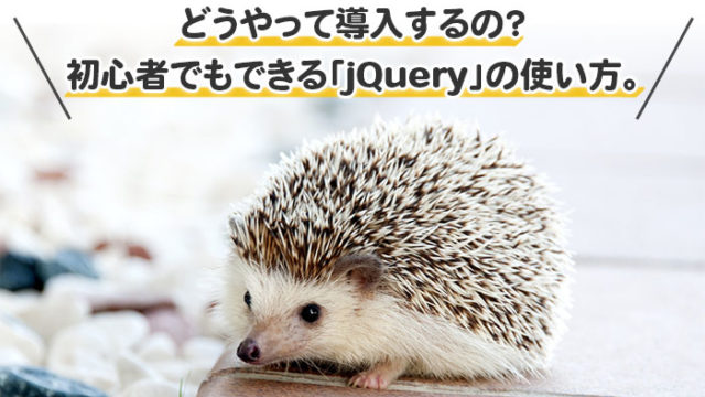 jQuery入門 - どうやって導入するの?初心者でもできる使い方と準備方法。